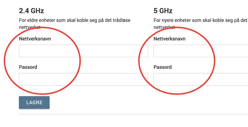 Skjermbilde - Skjemafelter for nettverksnavn og passord
