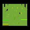 VMG 5 green