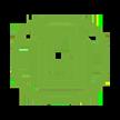 VMG SFP green